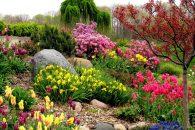 How to Encourage More Wildlife to Your Garden